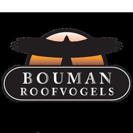 Bouman Roofvogels